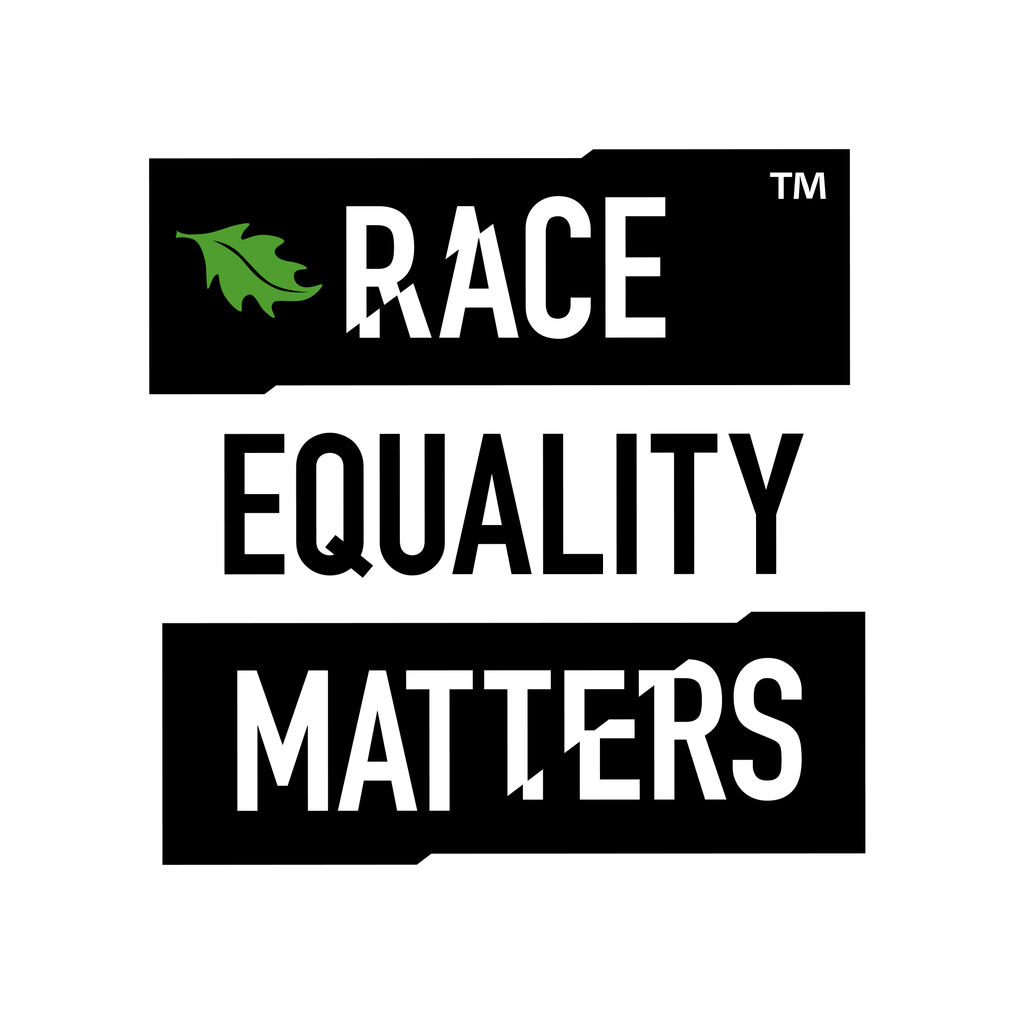 Race Equality Matters Logo